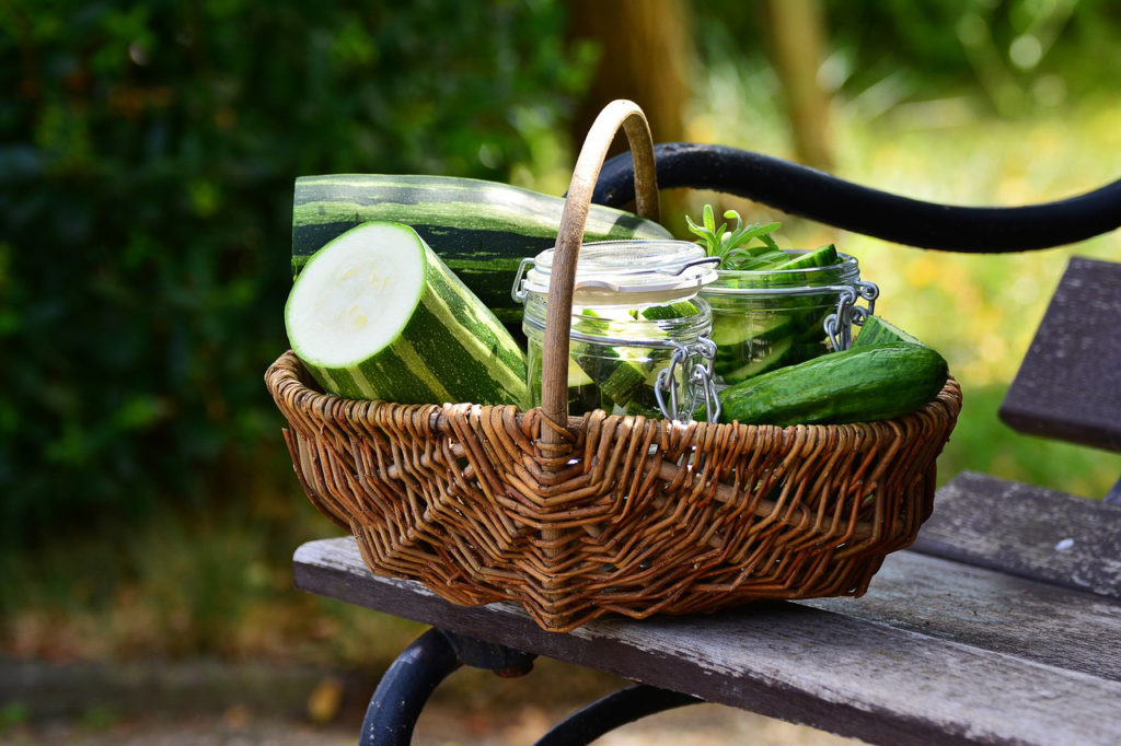 Panier de producteur AMAP légumes en circuit court