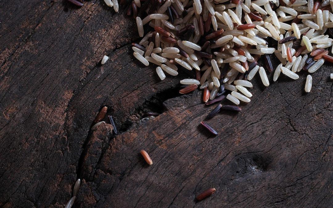 Cuisson du riz : différentes techniques à tester absolument !