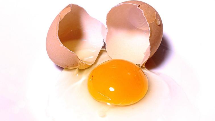 jaune d'œuf tensioactif