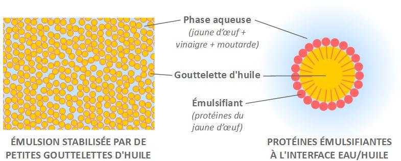 schéma émulsion vinaigrette